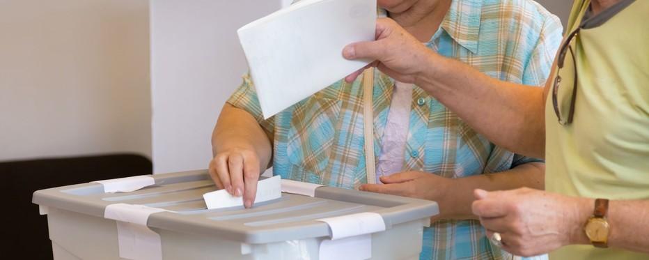 Billede af stemmeboks